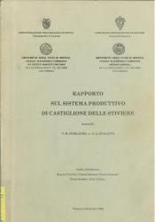 Rapporto sul sistema produttivo di Castiglione delle Stiviere
